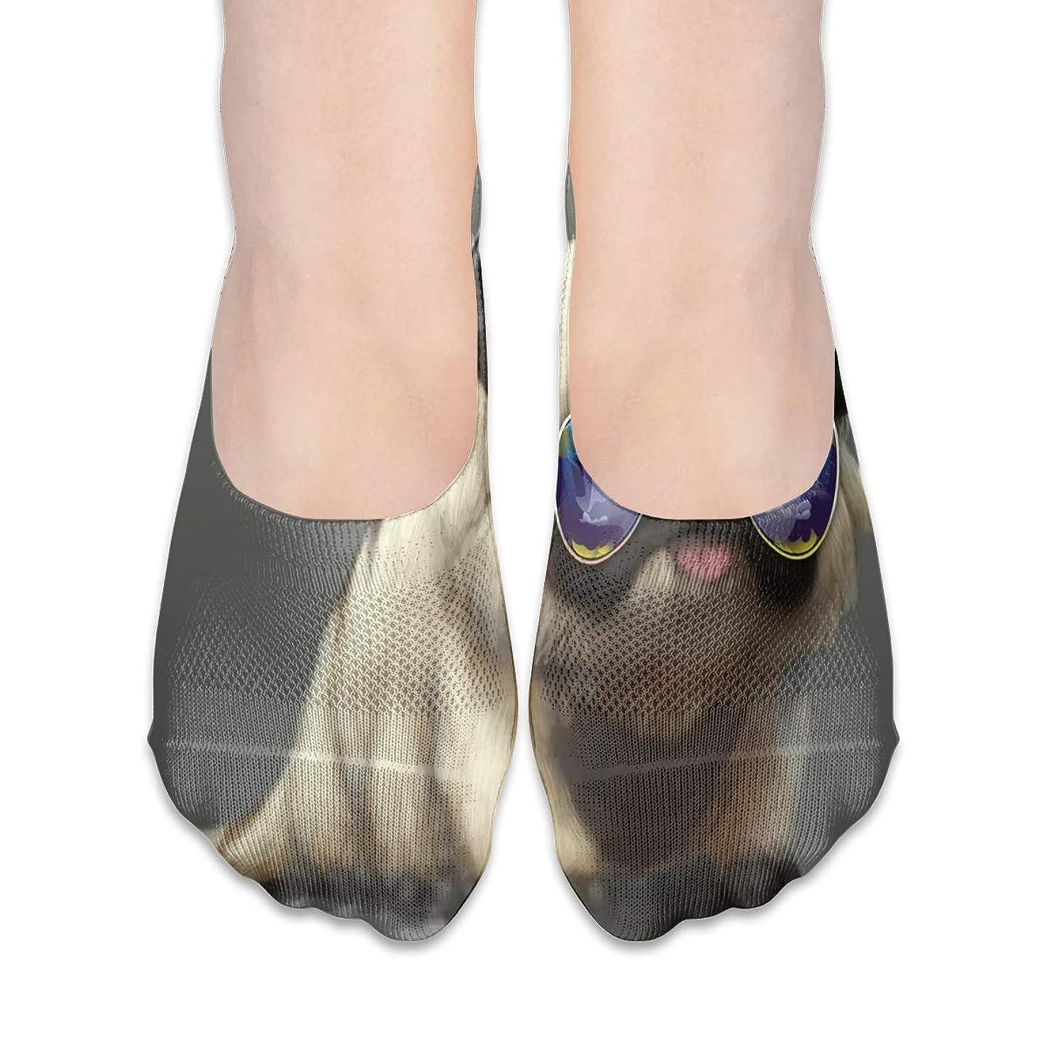 最少穴ユダヤ人サングラスローカットコットンボート隠し目に見えない靴下と女性のパグ犬