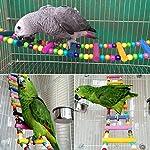 UEETEK Échelle colorée oiseau jouet, pont de l'arc-en-ciel en bois Flexible 12-escabeaux balançoires pour perroquets Trainning pour animaux de compagnie (couleur aléatoire) #2
