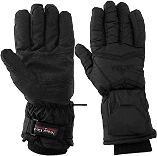 Lectra Glove Electric Batter Heated Winter Gloves