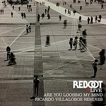 Are You Loosing My Mind (Ricardo Villalobos Remixes)