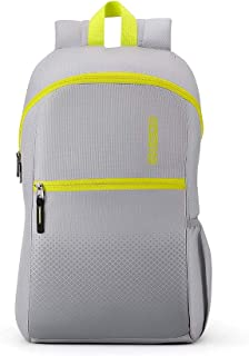 0b3187f2c65 American Tourister Dash 20 Ltrs Grey Casual Backpack (FF7 (0) 08 001)