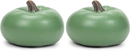 Elanze Designs Sage Green 6 inch Resin Harvest Decorative Pumpkins Pack of 2