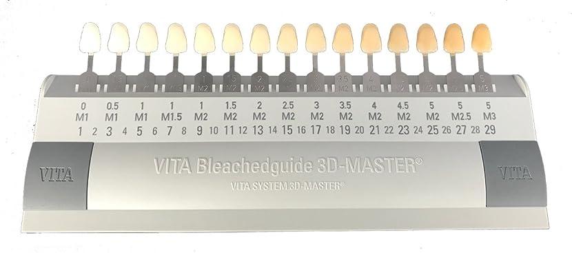 支配的数学者調子ビタ VITA ブリーチシェードガイド3Dマスター 15色