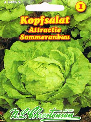 Salada de cabeza Attractie (porción)