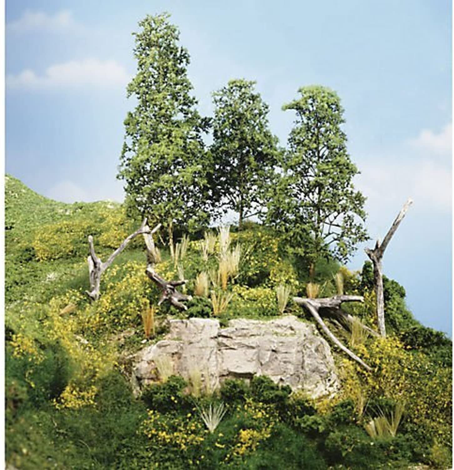 Scenic Learning Kit - Scenery Details by Woodland Scenics