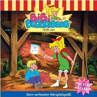 Bibi reißt aus audiobook cover art