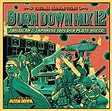 BURN DOWN MIX 12