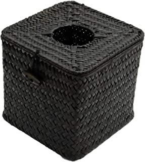 Tissue Box Cover/Dispenser Hidden Surveillance Security Nanny Camera