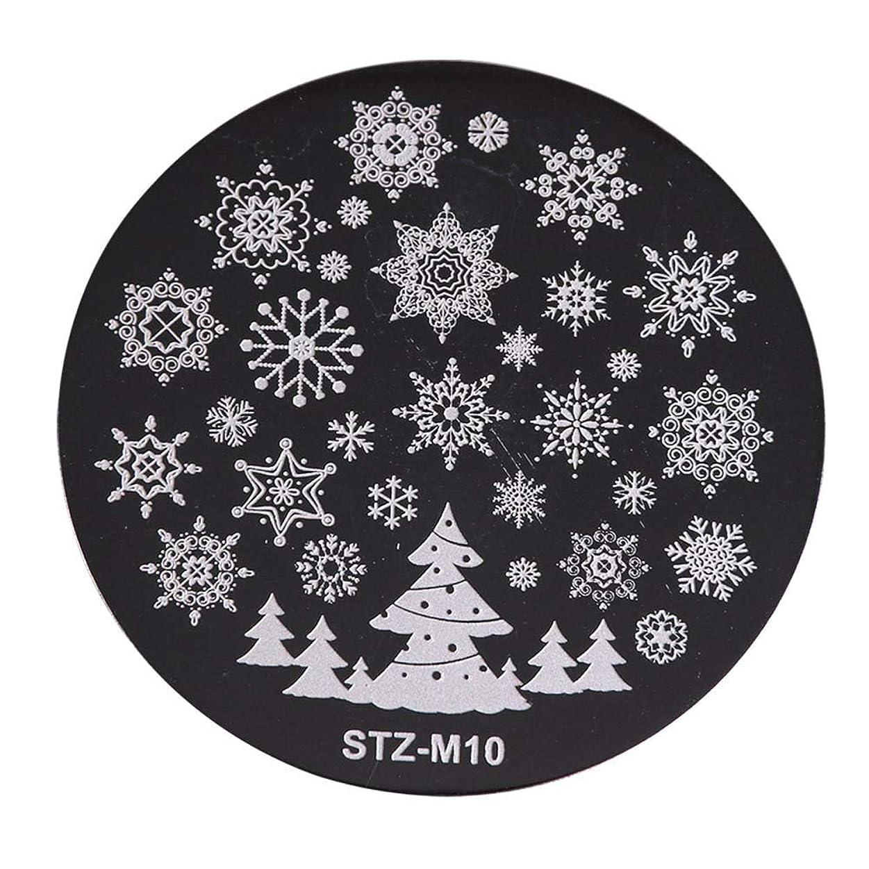ミリメータートライアスリート相関するクリスマスネイルスタンプ 雪の花 スタンププレート イメージプレート ネイルスタンプ ジェルネイル ネイルアート ネイルスタンピング 10種から選び (10)