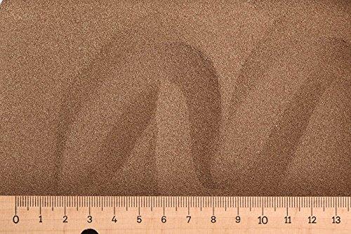 AK (Grundpreis 90,00 Euro/kg) - 0,55 kg Artemia Eier - 80{164f90a443586201b4b75d5df233f259734f42d33386771a04de61c27d5560c5} Schlupfrate - Artemia Selina