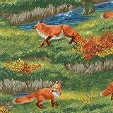 Fat Quarter Pflanzen Home Foxes Quilten, Robert Kaufman AAX