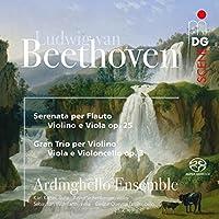 Beethoven: Serenade Op 25/Stri