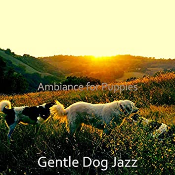 Ambiance for Puppies