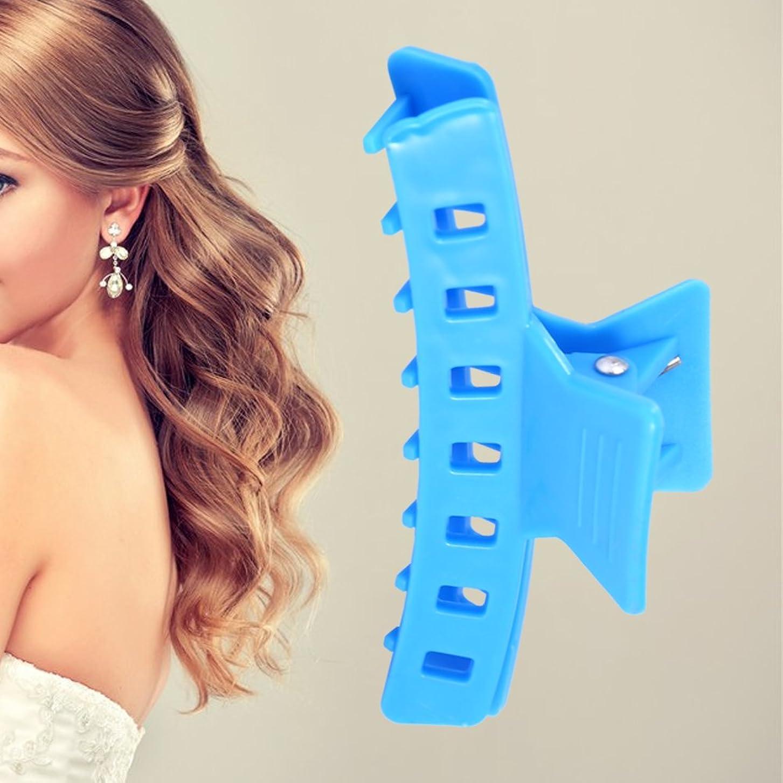 租界取るに足らないラッシュヘアクリップ、12 PCSプラスチックヘアクリップクリップヘアヘアアクセサリー