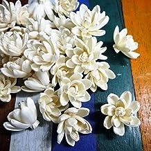 zonsgarden 20 Lotus White Sola Wood Diffuser Flowers 5 cm Dia.