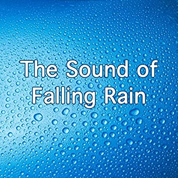 The Sound Of Falling Rain