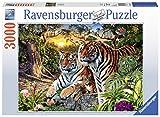 Ravensburger- Mixte, 17072