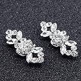 2 Stück (1 Paar) Schuhe Flower Bridal High Heel Pumps Flache Mode Crystal Diamond Schuhclips Mode Hochzeitsdekoration Schnalle