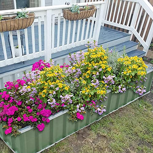 """KING BIRD Raised Garden Bed 68""""x 36""""x 12"""" Galvanized Steel Metal Outdoor Garden Planter Box Kit with 8pcs T-Types Tag & 2 Pairs of Gloves (Green) 6x3x1ft"""
