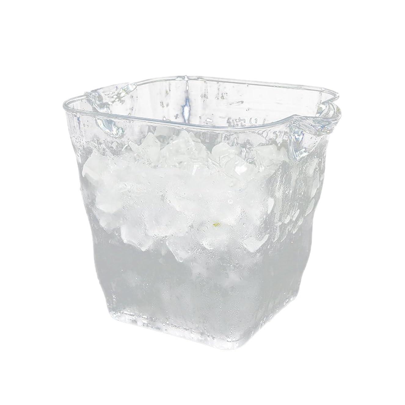 大使はい作成するOUNONA アイスペール アイスバスケット ワインクーラー 透明 軽量 ワイン シャンパン ビール用 アクリル(20x20cm)