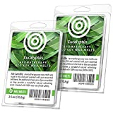 I & Candle (Eucalyptus) Aromatherapy Wax Melts. 100% Soy Wax (Non-GMO) - 2 Pack