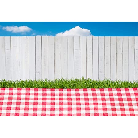 7x10 FT Vinyl Photography Background Backdrops,Colorful Fresh Summertime Pattern Design Gingham Plaid Striped Traditional Picnic Background for Selfie Birthday Party Pictures Photo Booth Shoot