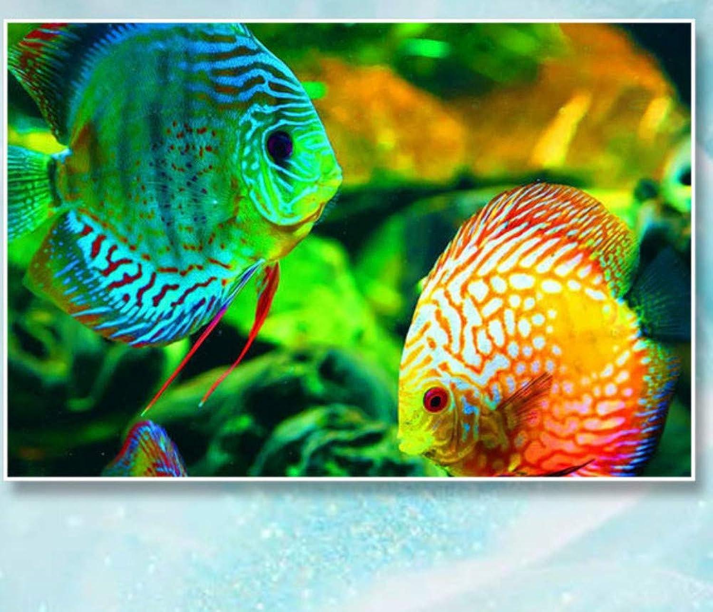 buscando agente de ventas XIGZI Diamante Pintura Pescado Punto Punto Punto de Cruz Animales 5D Decoración Hogar Regalos Sin Marco  tiempo libre