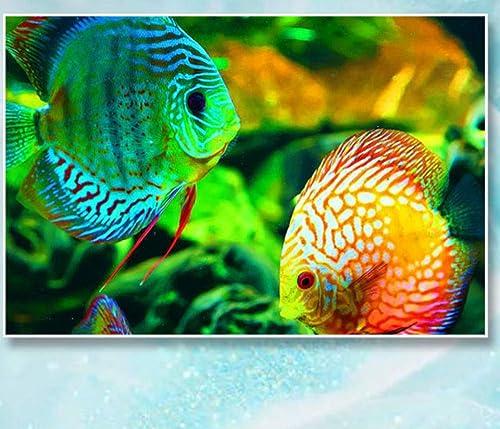descuento online XIGZI Diamante Pintura Pintura Pintura Pescado Punto de Cruz Animales 5D Decoración Hogar Regalos Sin Marco  Centro comercial profesional integrado en línea.