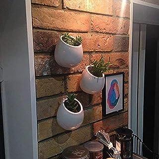 Ecosides Paquete de 3 Macetas de Cerámica Colgantes, Macetas de Pared para Plantas Suculentas y Cactus Decoraciones Flores Plantas Decoración de Oficina Bodas Cumpleaños Fiestas Navidad