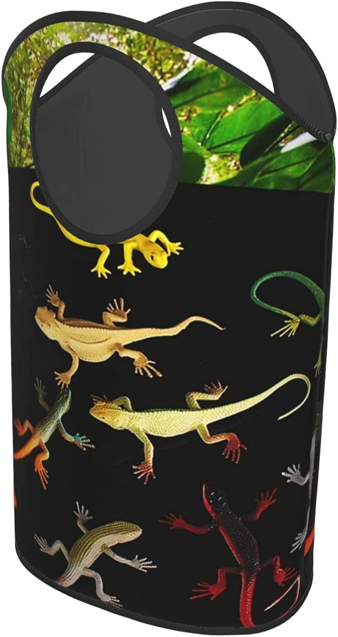 Exotic Pets Lizards free Animals Large Laundry Collapsible Rapid rise Baskets La