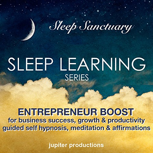 Entrepreneur Boost for Business Success, Growth, Productivity & Motivation audiobook cover art