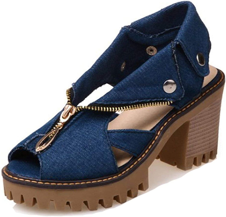 Women's Casual Unique Zipper Cutout Peep Toe Platform High Block Heels Denim Sandals shoes