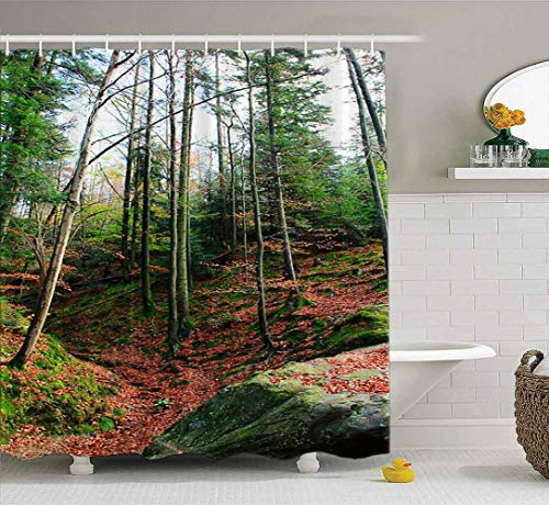 Capsceoll Wide Shower Curtain, Bathroom Shower Curtain Autumn in Mountains Beautiful Orange Red Autumn Mountain Landscape Colorful Big Stones 72X78 Inches with Hooks Fabric Bath Shower Curtain