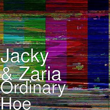 Ordinary Hoe