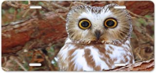 Best owl license plate Reviews