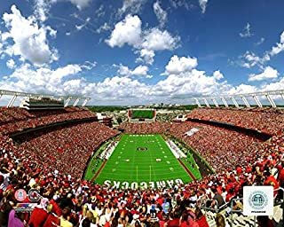 Williams-Brice Stadium South Carolina Gamecocks Action Photo (Size: 8