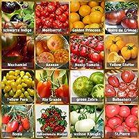 🍅 Inclus dans le paquet : 10 graines de tomates pour 16 espèces différentes de plants de tomates. Chaque variété est cueillie individuellement à la main, conditionnée et étiquetée selon vos besoins. 🍅 Facile à planter et à préparer: Nos graines de to...
