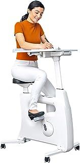 FLEXISPOT Adjustable Exercise Bike Desk Standing Desk Cycle for Home Office - Deskcise Pro
