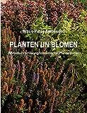 Planten un Blomen: Wörterbuch schleswig-holsteinischer Pflanzennamen