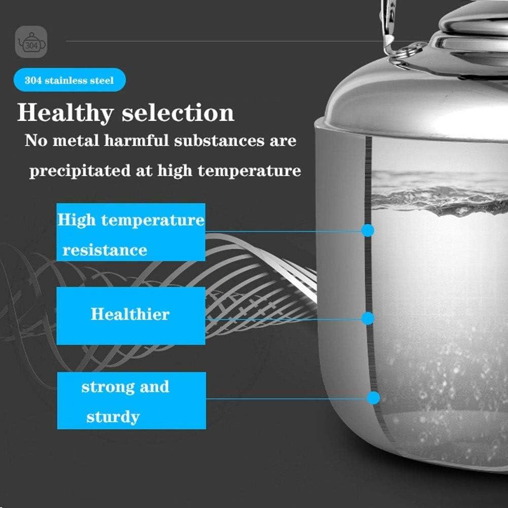 Waterkoker, theeketel-fluit theepot, roestvrijstalen theepot met grote capaciteit en hittebestendig handvat, geschikt voor kookplaat (kleur: zilver, maat: Silver