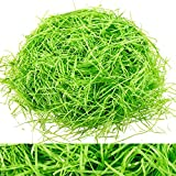 Whaline Basket Grass Craft Shredded Tissue Raffia Gift Filler Paper Shreds for DIY Gift Packaging Easter Basket Filling Egg Stuffer Party Supplies Accessories Decoration, 120g, 4 Oz (Green)