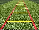 MOLLYNANA Agilité Jeu de Jambes Ladder Ladder - Vitesse de Formation des échelles d'exercice pour la Formation d'agilité Sport de Jeu de Jambes de Boxe du Monde de Football de Vitesse (Taille.