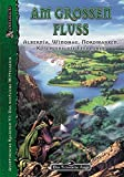 Momo Evers: DSA - Am großen Fluss