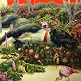 Songtexte von Rival Sons - Feral Roots