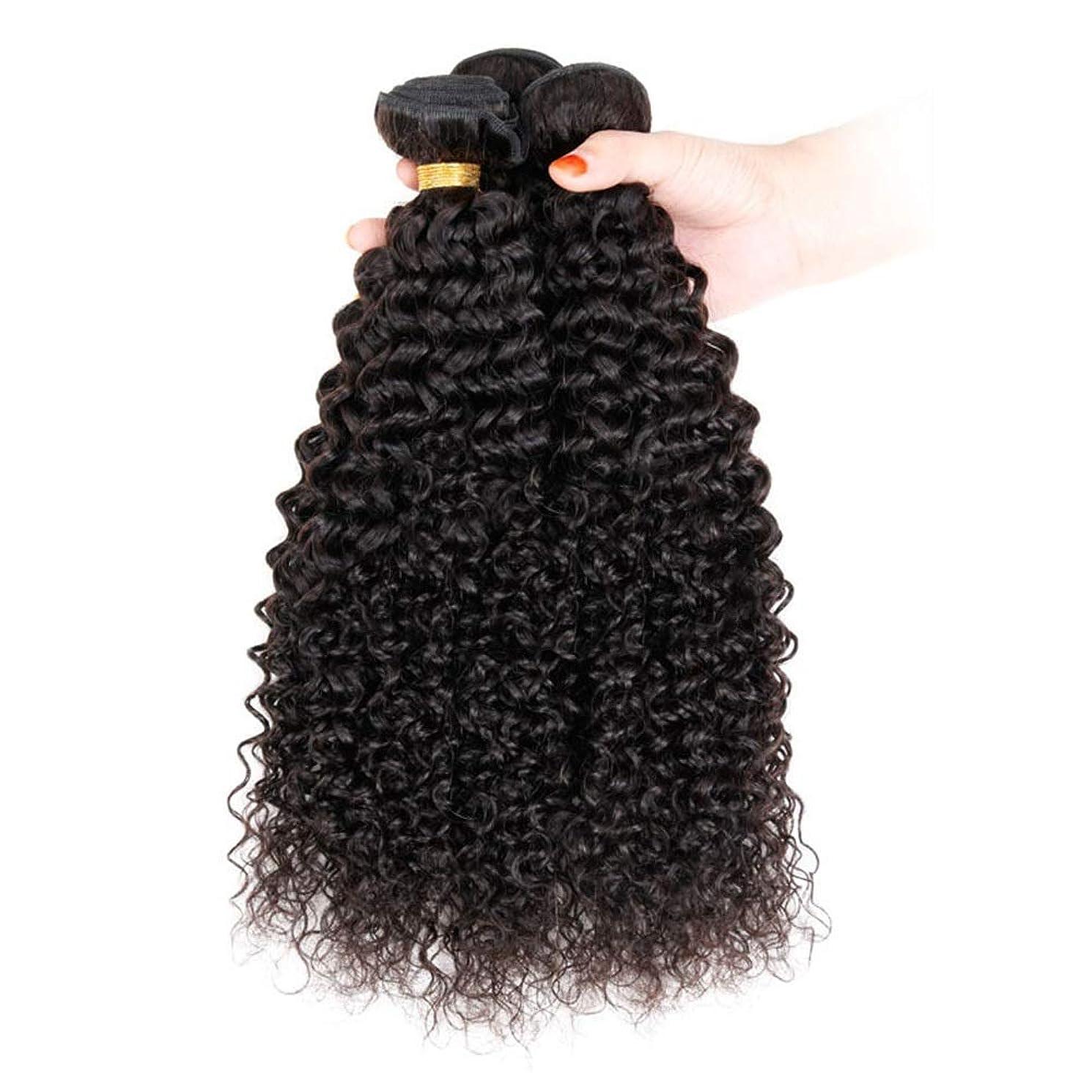 に負けるアクセント危険なかつら 未処理のブラジル人毛エクステンション変態カーリーヘア織り1束(50 +/- 5g)/ pc(12インチ-30インチ)小さなカーリーウィッグ (色 : 黒, サイズ : 14 inch)