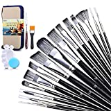 Best Oil Paint Brushes - Paint Brush Set with Standable Carrying Case, Acrylic Review
