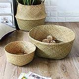 3 paquetes de macetero de cestas para el vientre de algas marinas, almacenamiento en...