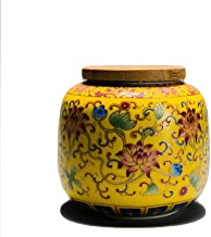 PPCP Cremation Urn for Ashes Adult Large - Funeral Urn for Human Women or Men - Display Burial at Home or in Niche at Colu...