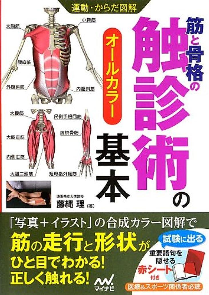 化合物謙虚湿気の多い運動?からだ図解 筋と骨格の触診術の基本