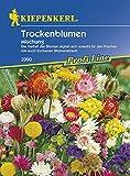 Trockenblumen-Mischung